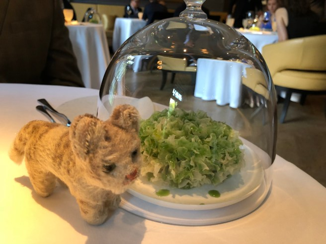 Frankie and the table decoration, now green