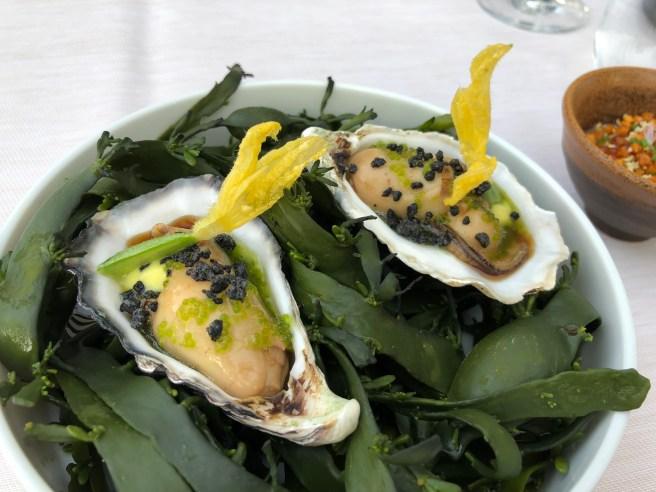 Gillardeau oyster, yuzu, cucumber