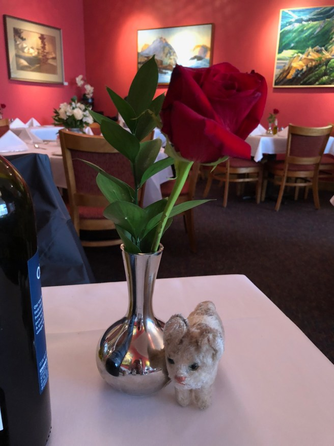 Frankie and the table rose
