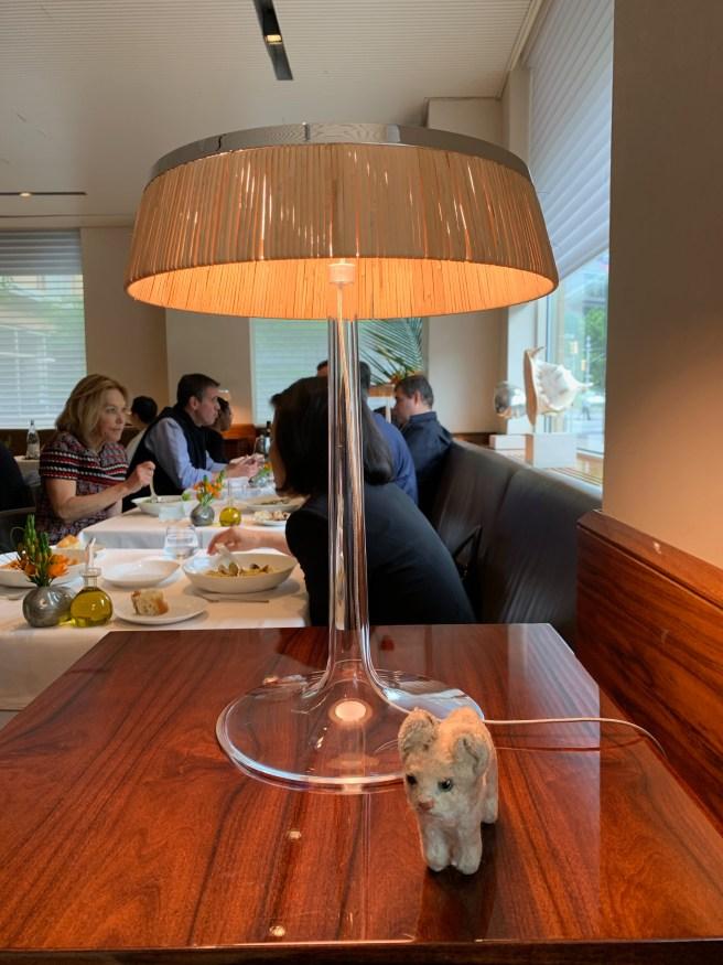 Frankie found a little lamp