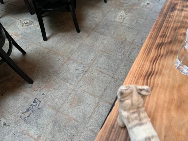 Frankie studied the floor