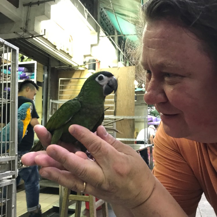 Finding a parrot friend at the Yuen Po Bird Garden