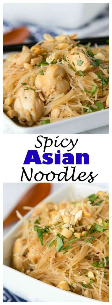 Spicy Asian Noodles with Chicken - a quick and easy Asian Noodle stir fry made with pantry ingredients you can have on the table in minutes!