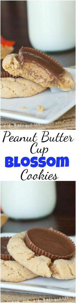 Peanut Butter Cup Blossom Cookies - take classic Christmas cookies to a whole new level and really impress!  Peanut Butter Cups make these cookies over the top! #cookies #reeses #peanutbutter #peanutbuttercups #christmascookies #baking #desserts #holidaybaking