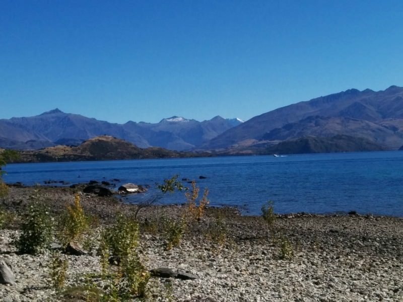 Walk down to the shores of Lake Wanaka New Zealand