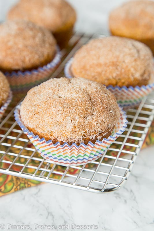 Cinnamon Pumpkin Muffins - soft tender pumpkin muffins coated in a cinnamon sugar mixture. A great fall breakfast treat!