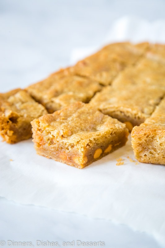 Butterscotch Blondies are buttery and delicious - great dessert any time of year