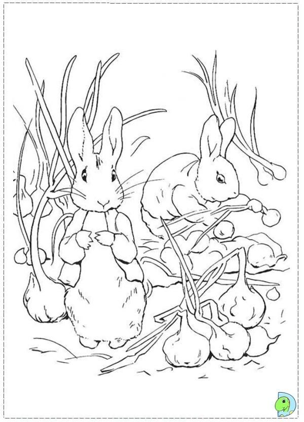 Free benjamin peter rabbit coloring pages
