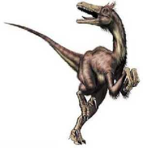 """L'image """"https://i0.wp.com/dinonews.net/images/dinos/velociraptor2.jpg?resize=295%2C304"""" ne peut être affichée car elle contient des erreurs."""