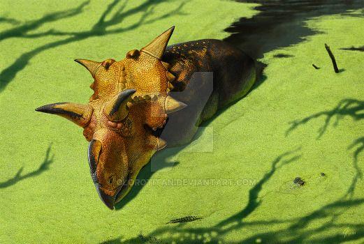 xenoceratops andrey atuchin
