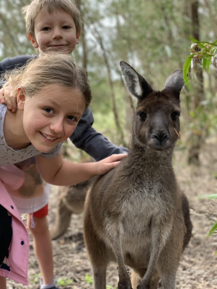 dinosaur-world-kangaroo-park-19