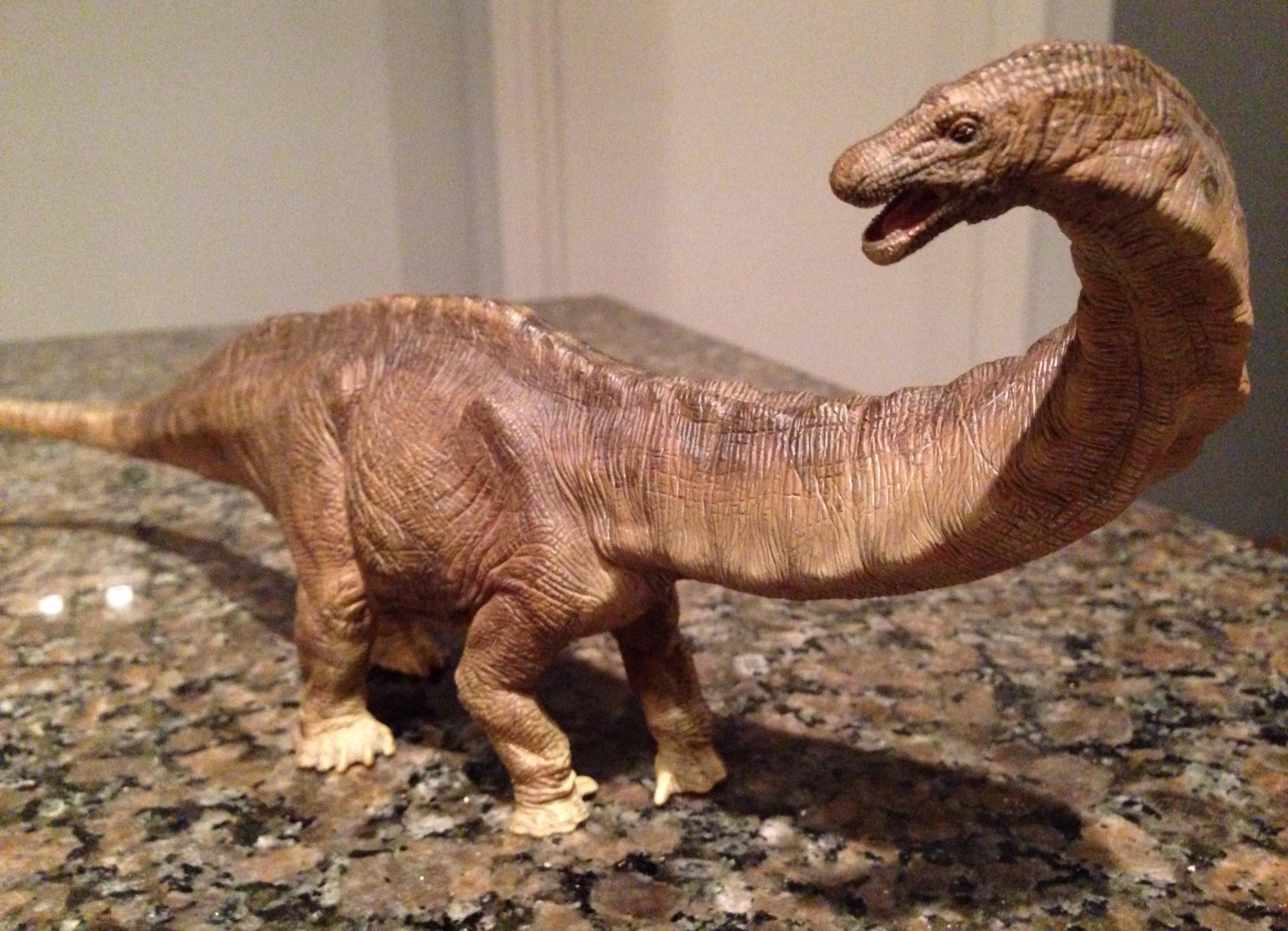 Apatosaurus (Papo) | Dinosaur Toy Blog