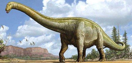 Самый большой динозавр на Земле: Суперзавр