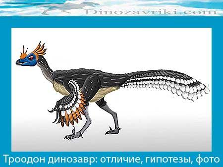 Троодон динозавр: отличие, гипотезы, фото