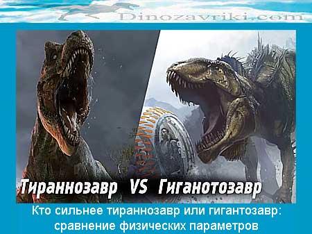 Тираннозавр против гиганотозавра: кто сильнее, сравнение физических параметров