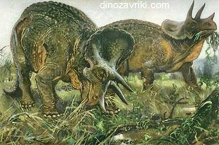 Динозавр трицератопс:  наименование, период и ареал существования