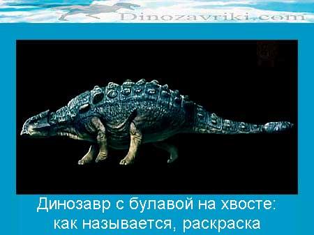 Динозавр анкилозавр с булавой на хвосте: раскраска