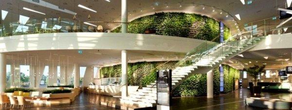 interior landscaping contractor