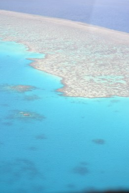 Of course the Great Barrier Reef
