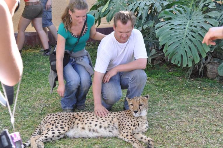 cheetah-park-nambia-32