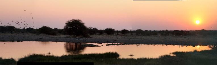 etosha-10-namibia