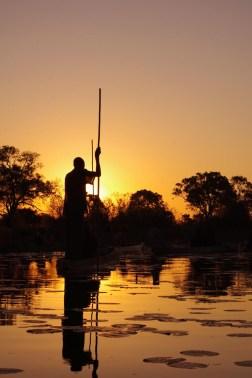 okavango-delta-zimbabwe-64