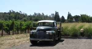 Pickup truck in vineyard