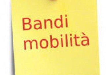 MOBILITA' VOLONTARIA BANDO DI CONCORSO