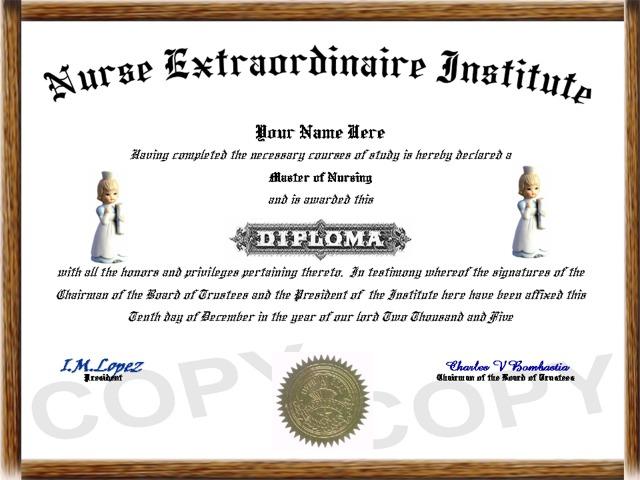 Download Diploma Programs In Nursing Free  Backupship