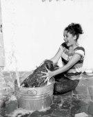 Elizabeth Taylor bathing her cocker spaniel