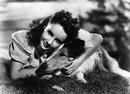Elizabeth Taylor, with Pal, in Lassie Come Home