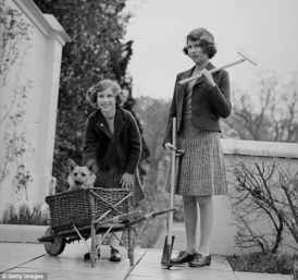 Princesses Elizabeth and Margaret Rose gardening with corgi assistance