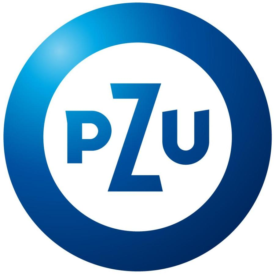 fall european diplomacy workshop eu foreign policy european pzu logo