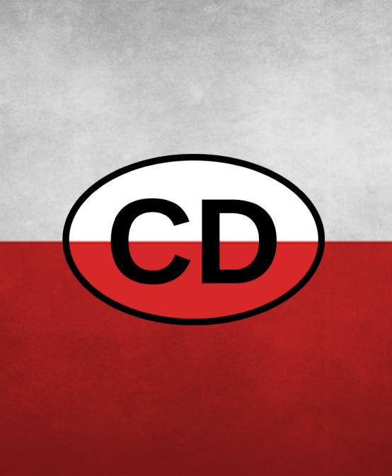 Polish for diplomats