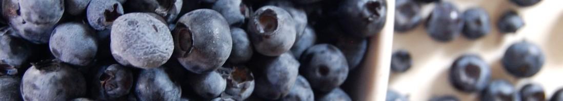 Blueberry Ice Cream Recipe