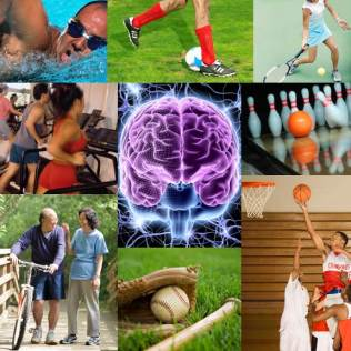 Muscle activity and brain function