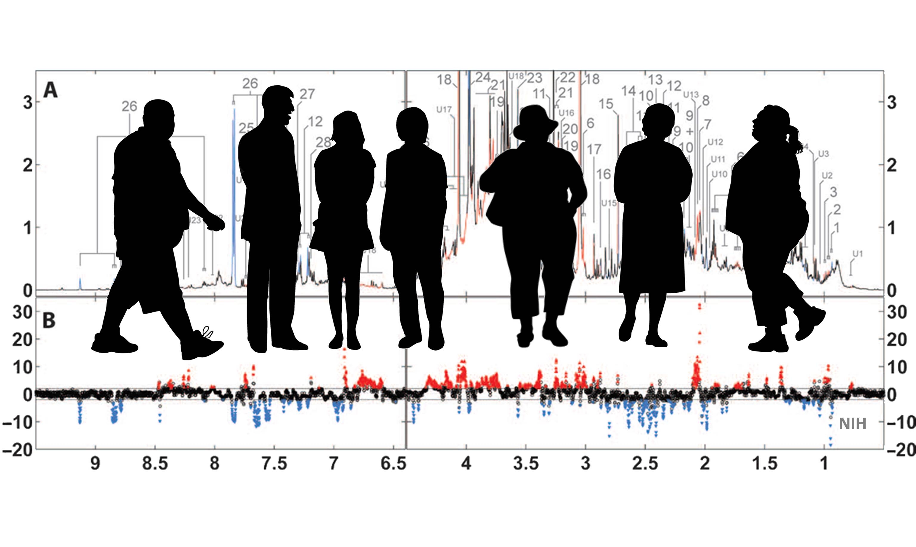 What Is Obesity? Metabolic Signatures Offer New