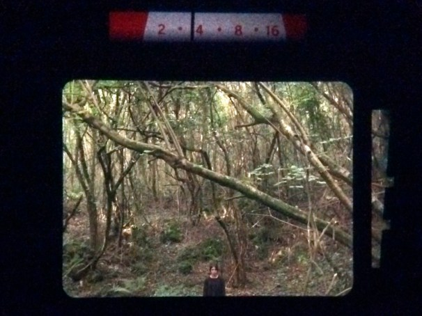 frightening_woods_camera_test_03