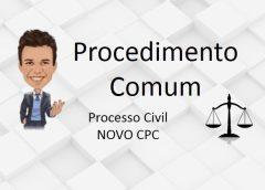 Procedimento Comum e o novo CPC
