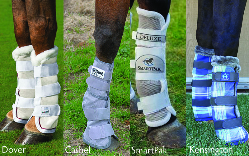 Fly protection for your horse: Fly