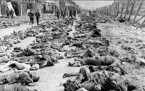 Hundreds of bodies clad in gray and white striped prison uniforms are laid out in rows at Dachau concentration camp. This is what Sgt. Irving Ross' unit found after they took control of the camp. For a week after his outfit captured the camp it had the problem of disposing of the hundreds of bodies so it continued the practice of their predecessors to reduce the possibility of an epidemic. Ross took this picture and many more.