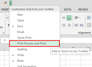 Office Excel 2013 Print Preview and Print