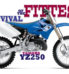 survival of the fittest the yamaha yz250 2 stroke story [ 1200 x 800 Pixel ]