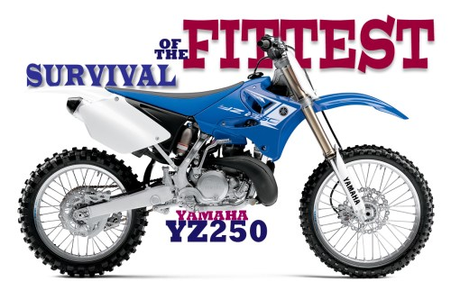 small resolution of survival of the fittest the yamaha yz250 2 stroke story