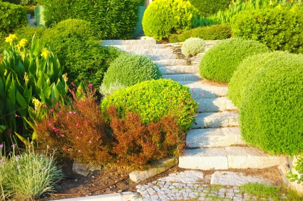 diy landscaping projects dirt cheap