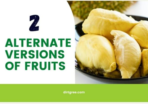 2 Alternate Versions Of Fruits Most People Are Unaware Of