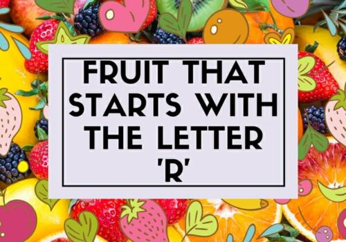 Fruit That Starts With The Letter R People Love To Eat