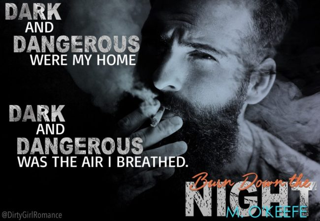 Burn Down The Night-DGR teaser