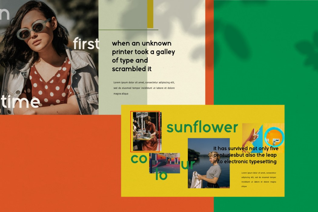 SUNFLOWER //  PRESENTATION