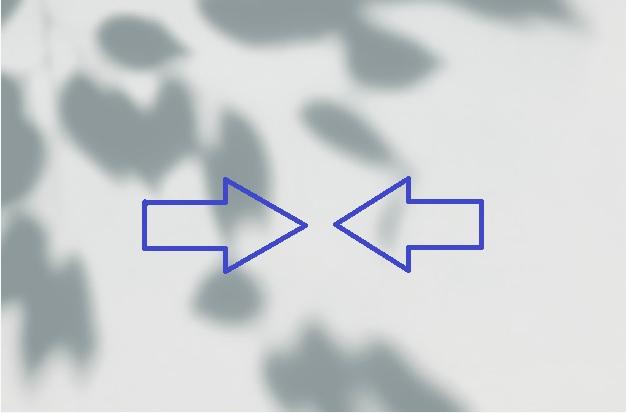 sobre una pared gris se ven las sombras de unas hojas de arbol y dos flechas azules encontradas